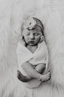 kinley-newborns-1018